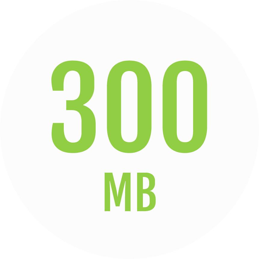 Fongo 300Mb Plan