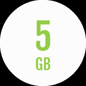 Fongo 5Gb Plan